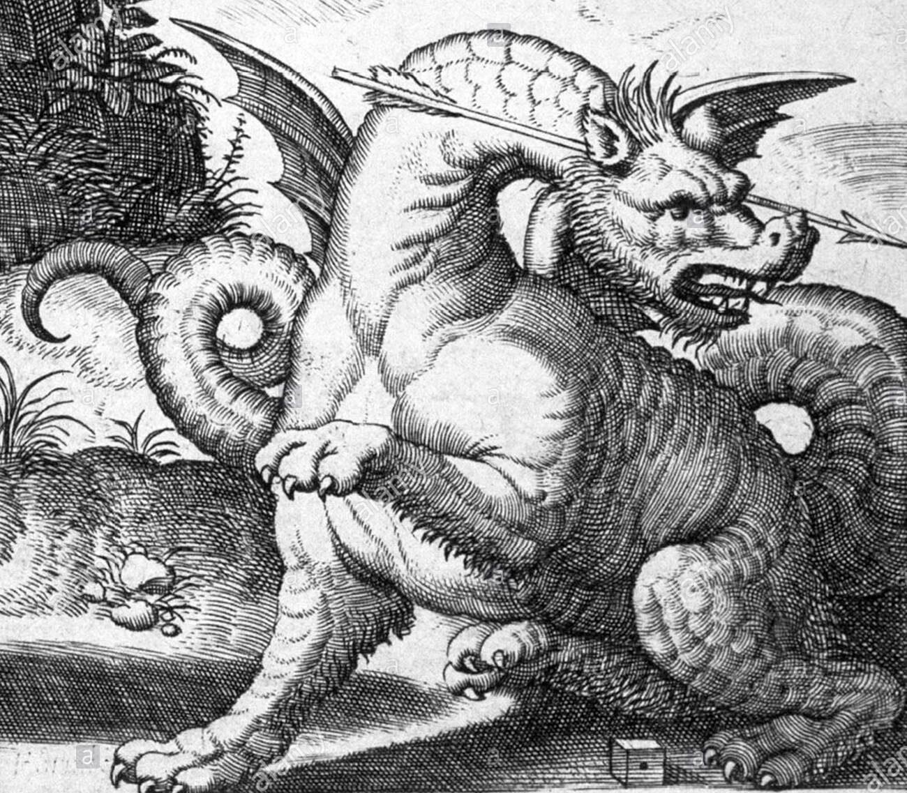 Python Dragon